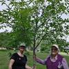 Susan and Kate with a tree at Beecher Park.