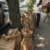 Bags of garden waste