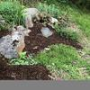 Rocks in garden bed