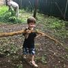 Child carrying large branch