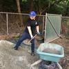 Volunteer scooping pea stone