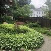 Weeded garden bed