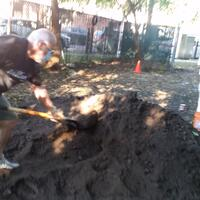mount topsoil