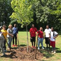 Group planting a tree at Edgewood Park