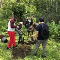 High Schooler Group Planting Trees