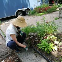Susan working on a planting bed.