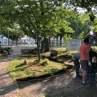 Volunteers doing several projects in park