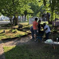 Volunteers working on multiple projects in park
