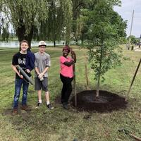 Volunteers with new tree planted