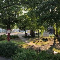 Watson and Bassett park
