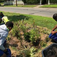 Kids volunteering at Norton