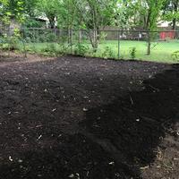 Spreaded mulch in garden bed